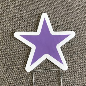 Purple20and20white20star.jpg