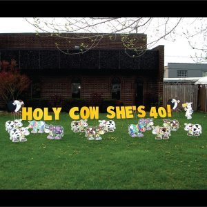 cows_gone_wild_yard_greetings_lawn_signs_cards_happy_birthday_hoppy_over_hill