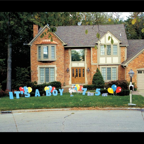 newborn_it's_a_boy_yard_greetings_lawn_signs_cards_happy_birthday_hoppy_over_hill