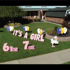 newborn_it's_a_girl_yard_greetings_lawn_signs_cards_happy_birthday_hoppy_over_hill