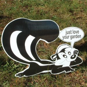 sk9_skunk_stinkin_yard_greetings_cards_lawn_signs_happy_birthday_over_hill