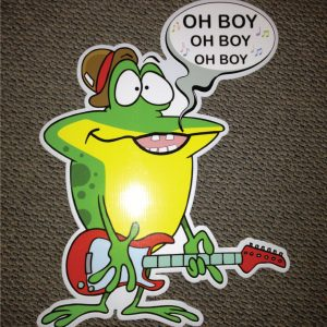 frog_oh_boy_hoppy_birthday_yard_greetings_lawn_signs_cards_happy_over_hill