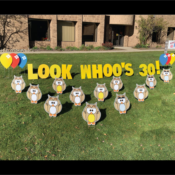owl_look_whoo's_animals_yard_greetings_yard_cards_happy_birthday_over_the_hill_lawn_signs_2